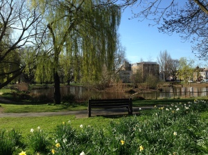 Image of pond and park - Barnes
